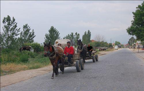 Vozitësi i qerres, i cili lëvizë pas qerres tjetër në rrugë (si në fotografinë), është i obliguar që ta mbajë distancën prej më së paku: